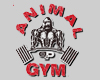 Animal Gym Renca